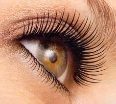 Eyelash Treatment Charlotte Latisse