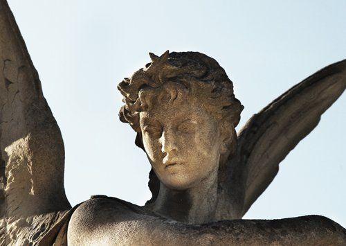 Afrodite: la bellezza senza pari-Aquara