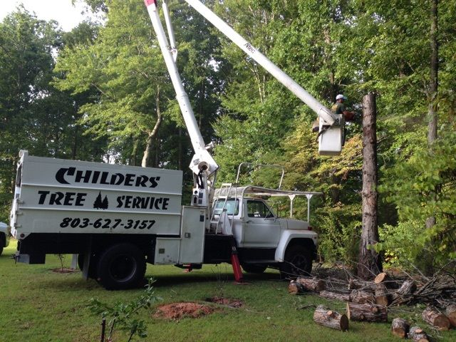 Tree and stump removal services as part of tree care services in Hywy York, SC