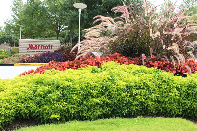 Landscape Design Construction Services In Atlanta Gwinnett