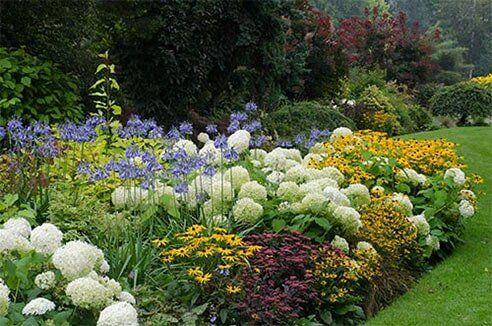 Gardener - Culver City, CA - Morales Garden Services