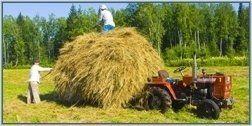 negozio articoli agricoltura