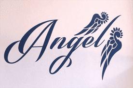 ANGEL PARRUCCHIERA - LOGO