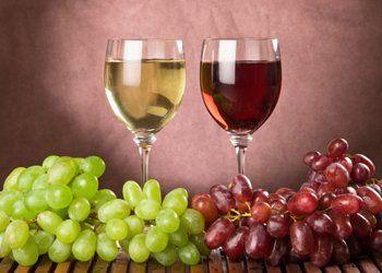 vini rossi, vini bianchi, degustazioni vini