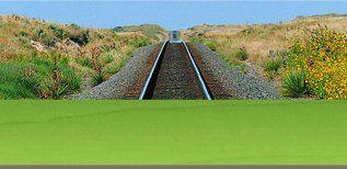 An empty railway coursing through heathland