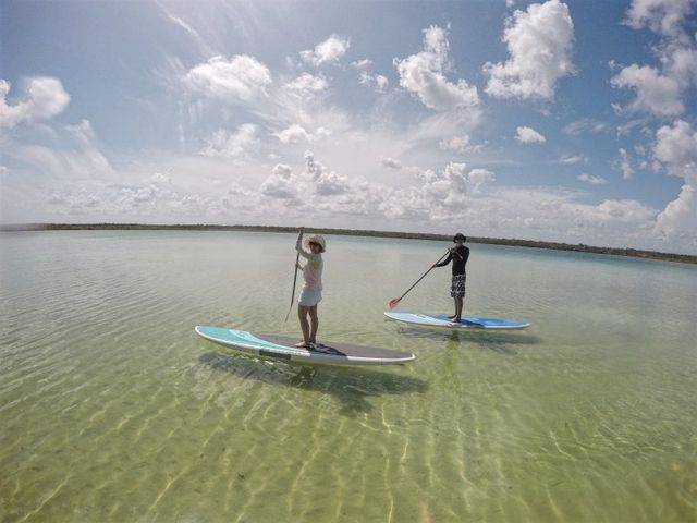 Stand Up Paddle Boarding Tour to Kaan Luum Lagoon in Tulum Mexico