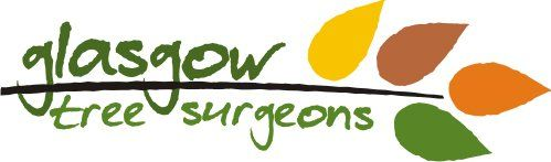 Glasgow Tree Surgeons logo
