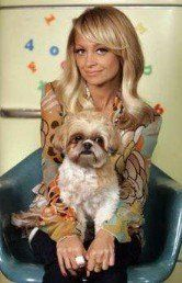 Nicole Richie and Shih Tzu Honeychild