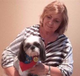 Shih Tzu therapy dog with owner