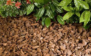 Garden bark for practical and decorative purposes in Manchester