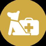 Icona di un cane con una cassetta del pronto soccorso