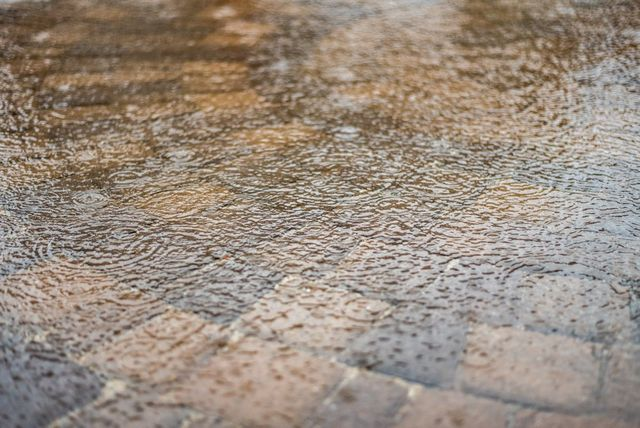 Getting to Know the Water Damage Restoration Process for