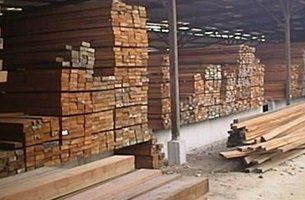 panther timber hardware timber plywood at work place