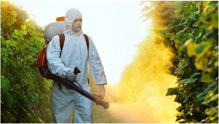 Operaio In Indumento protettivo con mascherina pesticidi spruzza per agricolo