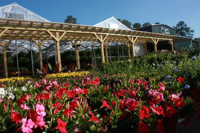 Good Earth Produce U0026 Garden Center: