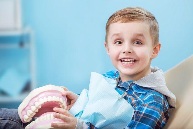 bambino sulla sedia del dentista che sorride mantenendo una dentiera giocattolo
