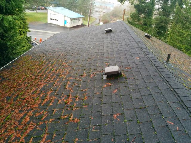 Roof Cleaning Seattle Wa Asap Graffiti Removal And