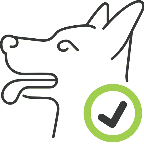 dog behaviourist