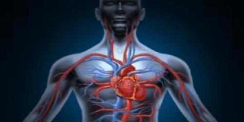 medico con stetoscopio ascolta cuore finto