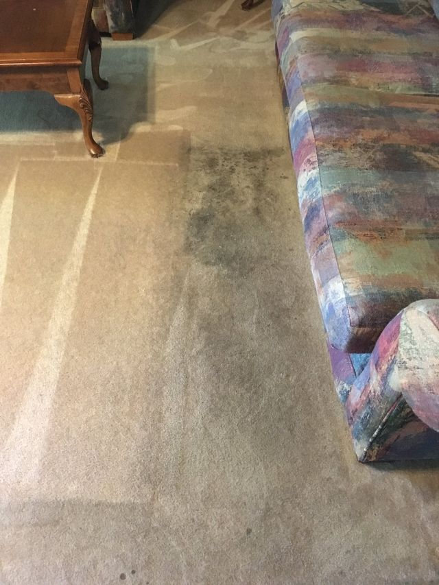 Carpet Cleaning Amarillo Tx Amarillo Steamway