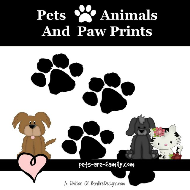 Animals Pets and Paw Prints