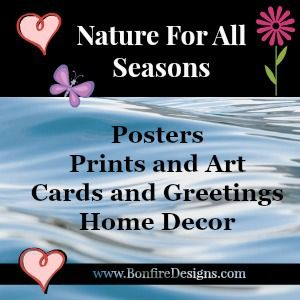 Posters, Prints and Art For All Seasons