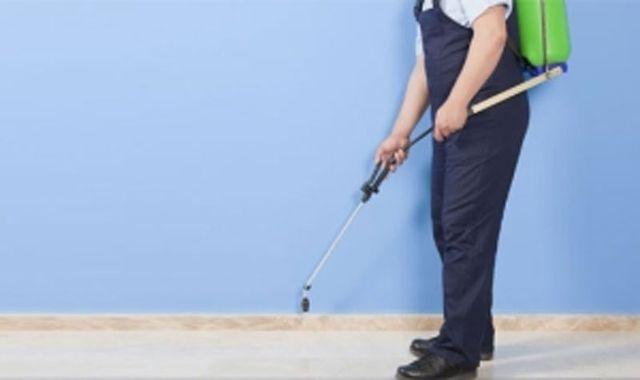 spruzzare pesticidi sulla interno della casa