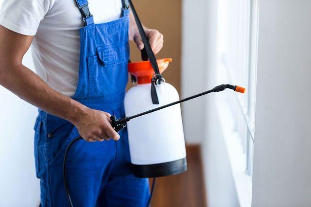 Sezione centrale di lavoratore controllo dei parassiti con lo spruzzatore in piedi a casa