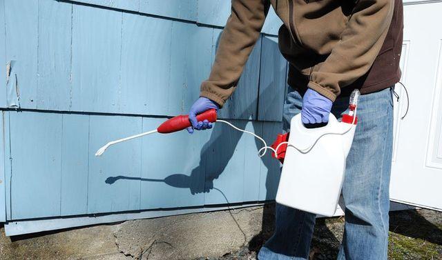 spruzzare pesticidi sulla casa esterno