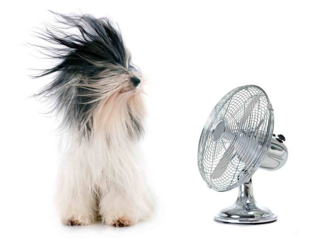 Daikin Air Conditioner in Perth | Comfort Zone Insulation