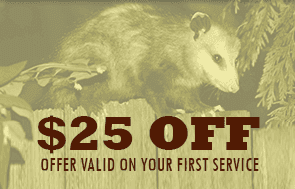 $25 Off - Offer Valid on Your First Service