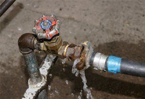 All aspects of plumbing