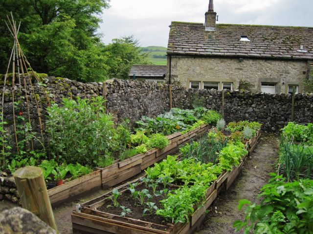 Conistone Residents' Vegetable Garden