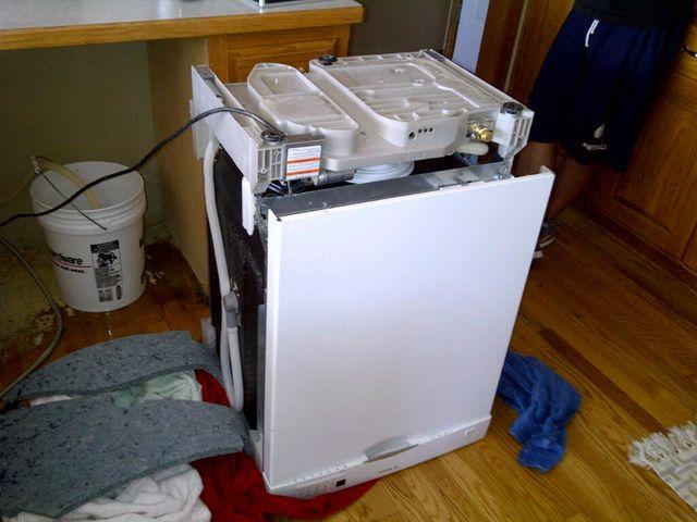 曼迪·格雷把他的洗碗机修好