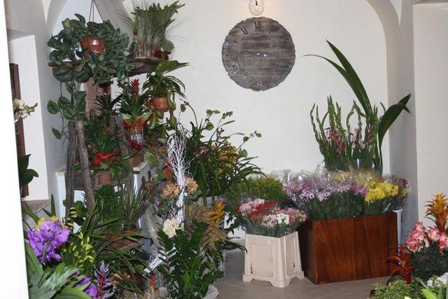 Composizioni floreali con vasi disposti sul pavimento