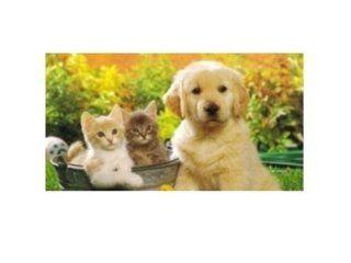integratori animali