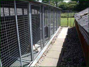 Individual dog kennels