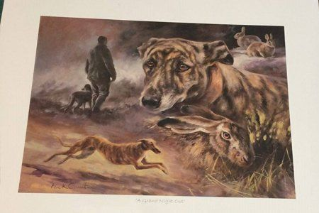 Buy Canvases & Prints Online