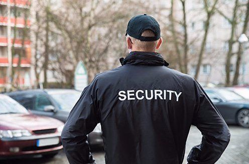Security professional at the site