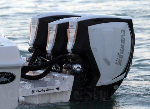 Motori Marini Evinrude