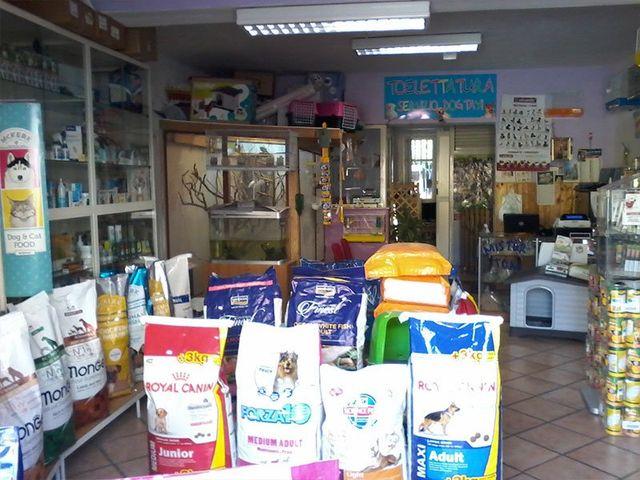 prodotti alimentari e accessori per animali da Mister Tom