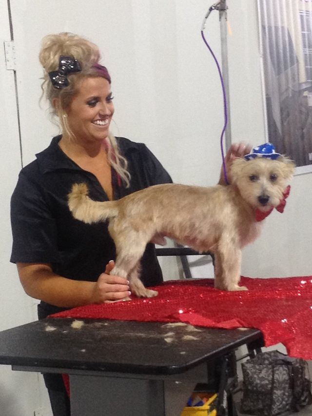 pet spa san antonio tx | dog grooming | canine couture