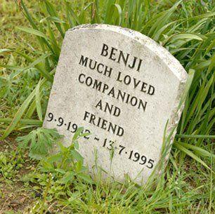 Pet burials