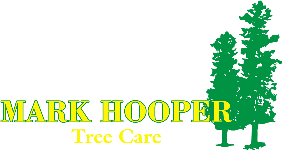 Mark Hooper logo