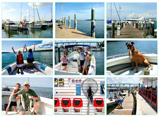 Moss Marina Full Service Marina Luxury Boat Rentals