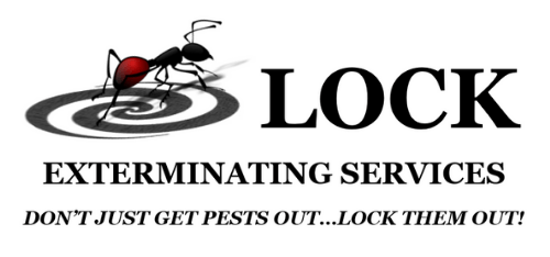 Northern Atlanta S Most Trusted Pest Control