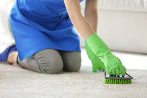 Woman cleaning carpet in the room