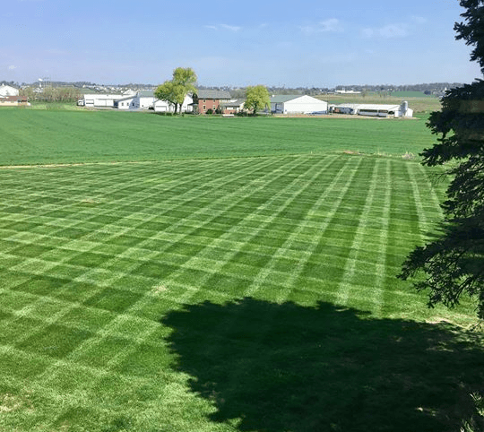 Professional lawn maintenance and mowing from Cook Bros Estate Services