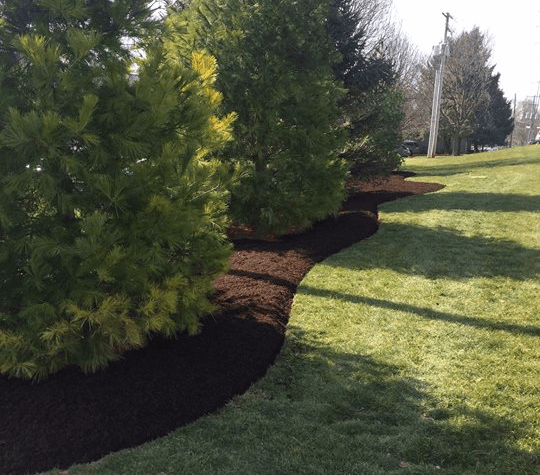 Beautiful edging and mulching by Cook Bros Estate Services