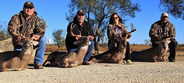 Deer Hunting Harrisburg, PA